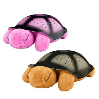 Sweet dreams night light turtle