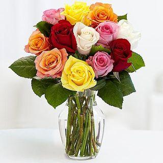 Proflowers rainbow roses