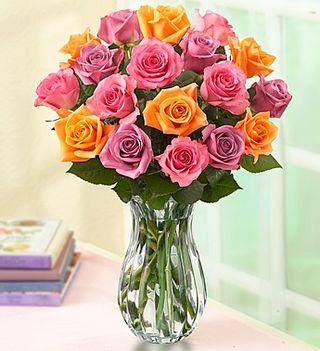 Sorbet roses 1800flowers