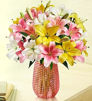 Lillies deal of the week