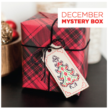 Cricut december mystery box